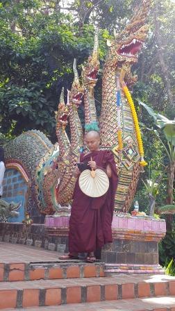 Monk in Doi Suthep