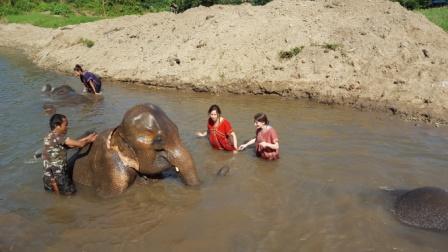 Lali bañando a elefante en reserva de recuperación de elefantes