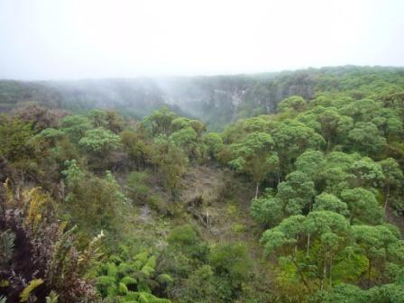 Cráteres Los Gemelos, Isla Santa Cruz, Galápagos, Ecuador. www.lololali.com