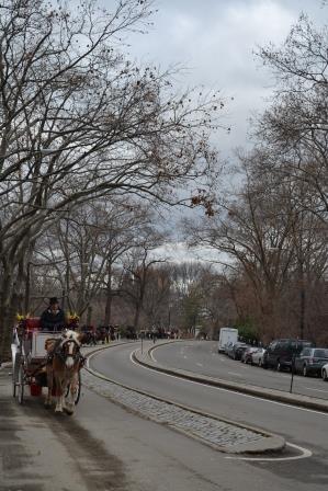 Paseo en Mateo en Central Park en invierno