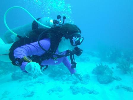 ¿Qué hacer en la isla San Andrés en Colombia?