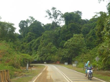 Camino Kuala Lumpur a Taman Negara, próximo al Parque Nacional