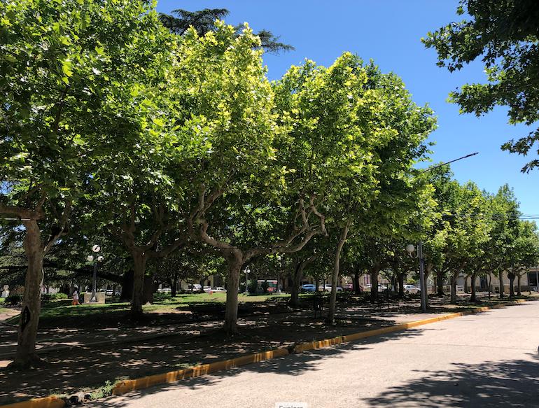 Plaza San Martín, Capilla del Señor